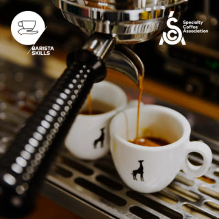 Image for SCA – Barista skills foundation